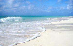 Wyjazd w styczniu na Kubę