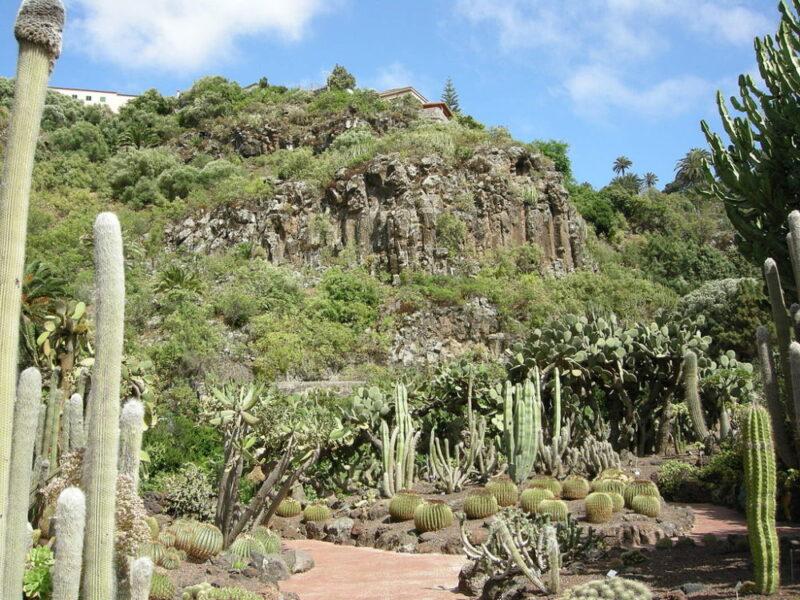 Gran canaria ciekawe miejsca i atrakcje turystyczne co for Jardin canario