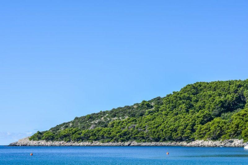 Wyspa Mjlet